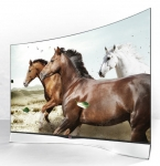 Curved Screen TV